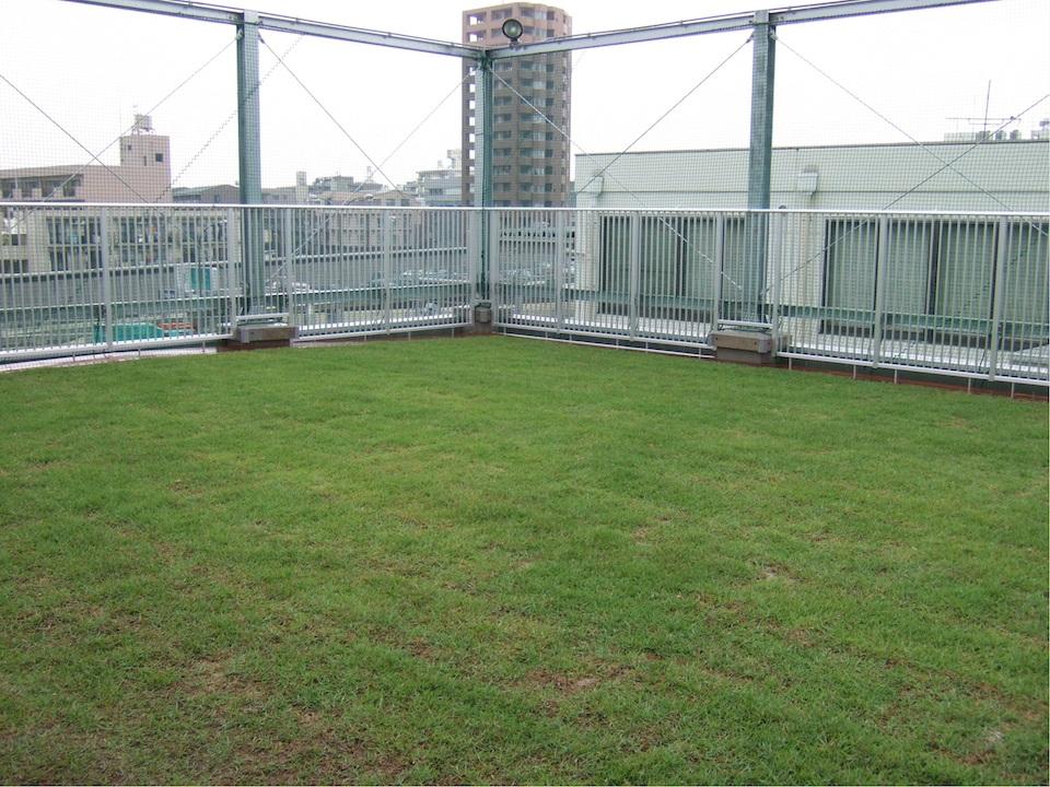 facility-roofyard